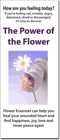 Flower Power Brochures (25)